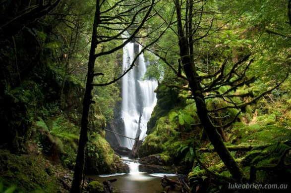 Philosopher Falls near Waratah, in Tasmania's Tarkine