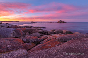Sunset Bay of Fires Picnic Rocks