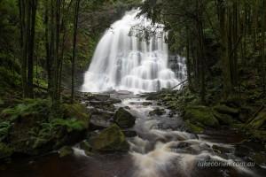 Nelson Falls in Tasmania's World Heritage Area