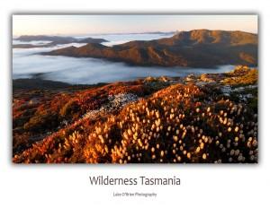 Tasmanian Postcards: Mt Rufus Tasmania
