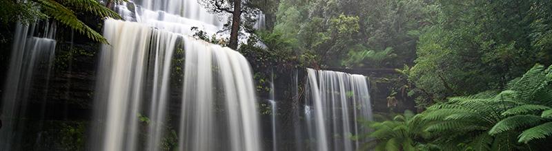 Russell Falls Tasmania Day Tour