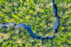 Styx River aerial photo