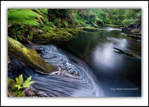 Styx River, Tasmania