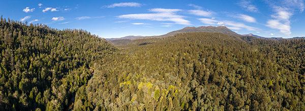 Styx Valley Tasmania