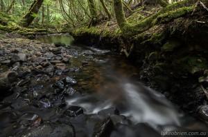 Styx River Tasmania