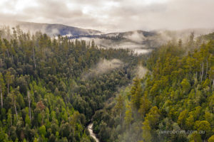"""Mist shrouds the Styx """"Valley of the Giants"""""""