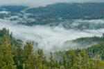 styx valley tolkien grove
