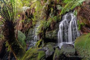 Waterfall on Waterfall Creek