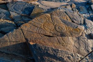 Sundown Point Petroglyphs