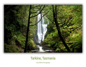 Tasmanian Postcards - Tarkine Philosophers Falls