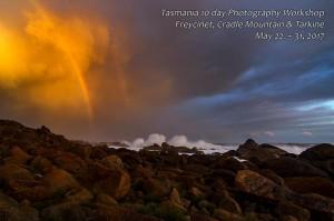 Tarkine Coast Tasmania