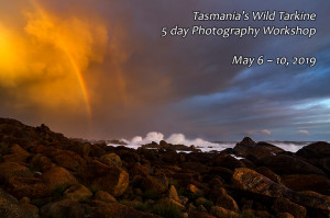 tarkine photography workshop