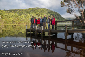 Tarkine Landscape Photography Tour Tasmania