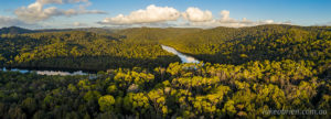 Tarkine drone photos - late afternoon light on the forest canopy.