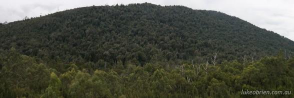 Mt Lindsay Mine Site, Tarkine