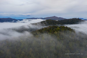 Mt Donaldson and morning mist, Tarkine