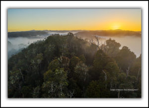Sunrise Tarkine