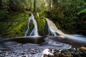 Secret Tarkine Waterfall