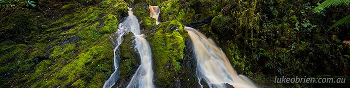 A Beautiful Tarkine Waterfall