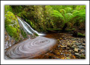 Tarkine waterfall and swirls
