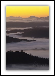 Morning Mist below Mt Donaldson, Tarkine