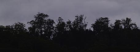 Ridgeline Silhouette