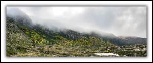 P52: Tarn Shelf, Mt Field, in autumn