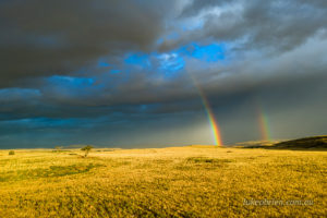 stunning sunset rainbow over tasmania's midlands
