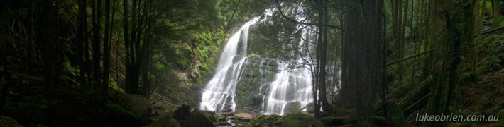 Tasmanian Waterfalls: Nelson Falls