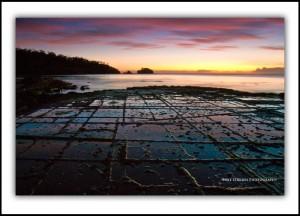 Tessellated Pavement, Dawn