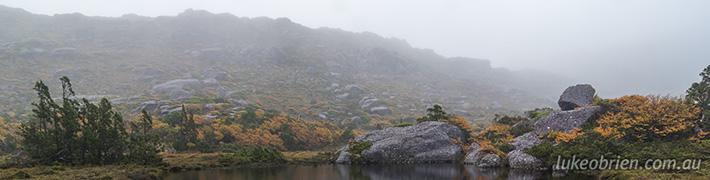 Fagus 2014 Part II: Tyndall Range, Western Tasmania