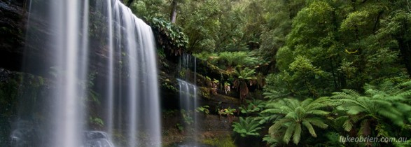 Tasmanian photography locations: Russell Falls, Mt Field