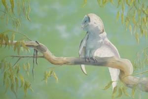 Tasmanian wildlife artist Hazel Howie