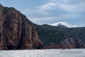 wineglass bay cruise coast