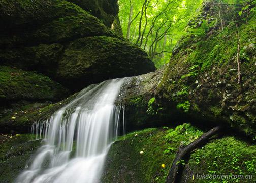 Forest cascade, Yuusenkyou, Yamagata
